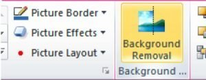Background Removal PowerPoint 2010