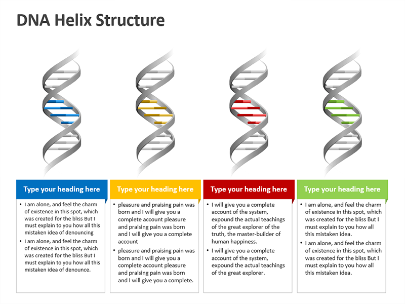 Editable PowerPoint Slides on DNA Helix Diagram