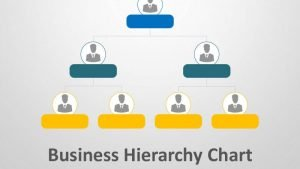 Business Hierarchy Chart PPT Template