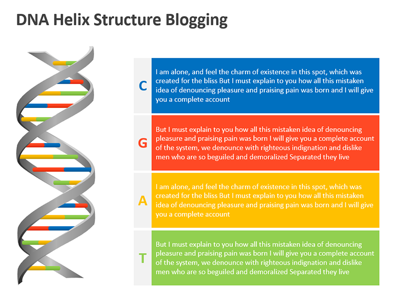DNA Helix Strand Editable PPT Illustration