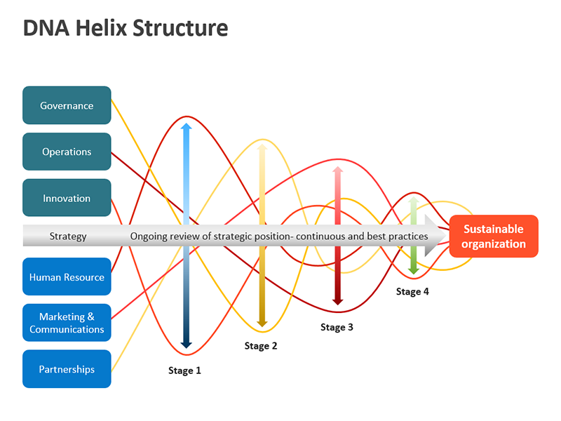 Double Helix Strand PowerPoint Diagram