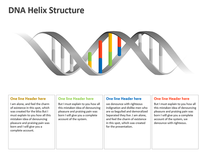 DNA Molecule Diagram PowerPoint