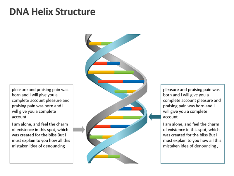DNA Helix Structure PowerPoint Slide