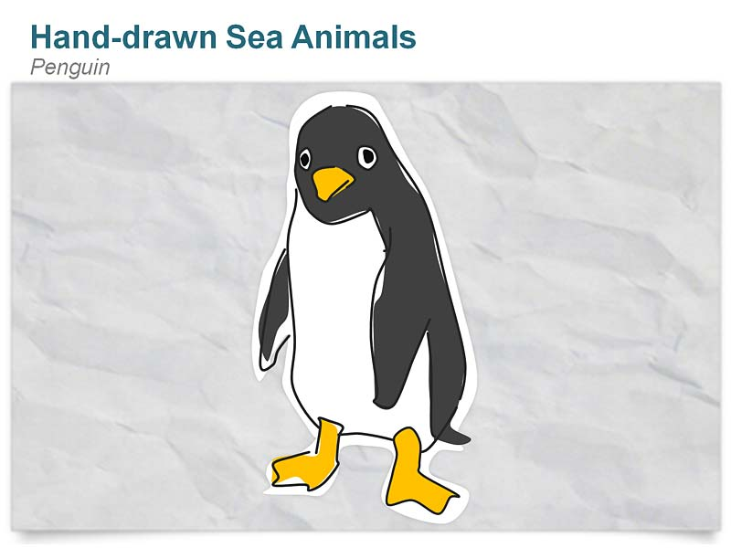 Hand drawn Penguin Editable PowerPoint