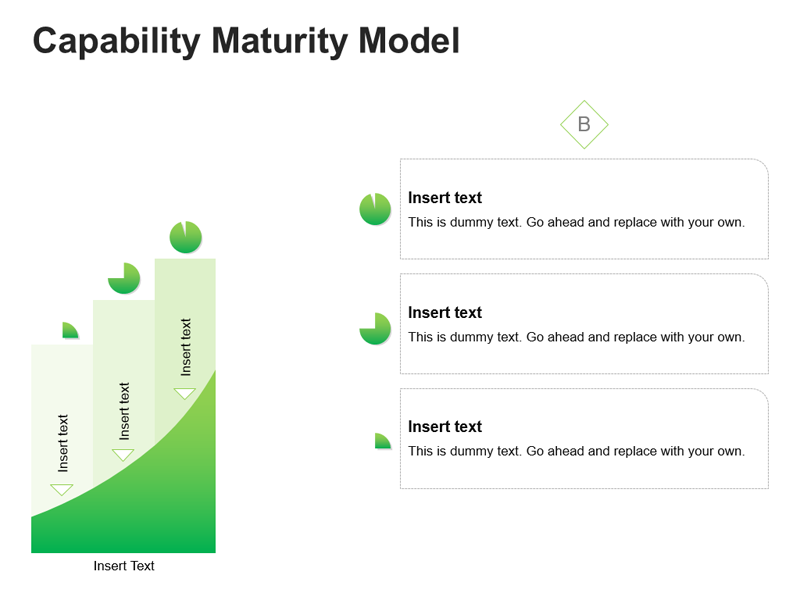 PPT Slide on Maturity Model